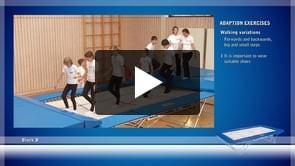 Adaption exercises